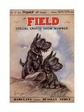 Dogs, UK, 1930 Giclee Print