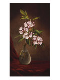 Laurel Blossoms in a Vase Giclee Print by Martin Johnson Heade