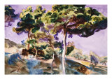 Trees Giclee Print by John Singer Sargent