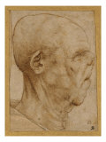 Caricature of the Head of an Old Man, in Profile to the Right, c.1507 Art by  Leonardo da Vinci
