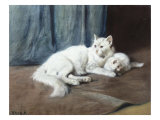 White Persian Cat with Her Kittens Giclee Print by Arthur Heyer