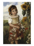Flowers of the Field, 1883 Print by Emily S. Readshaw