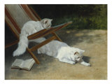Two White Persian Cats with a Ladybird by a Deckchair, 19th Century Prints by Arthur Heyer