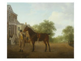 Gentleman Holding a Saddled Horse in a Street by a Canal, 18th-19th Century Giclee Print by Jacques-Laurent Agasse