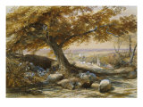Sheep in the Shade, c.1851 Art by Samuel Palmer