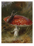 Stag Beetle on a Toadstool, 1928 Posters by Archibald Thorburn
