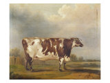 Wildair' an Eight-Year-Old Heifer in a River Landscape, 1827 Giclee Print by Thomas Weaver