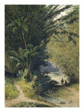 Bamboo Grove in Trinidad Giclee Print by Jean-michel Cazabon