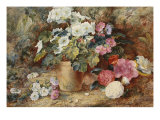 Still Life with Camellia Flowers on a Bank Beside a Pelargonium in a Pot, 19th Century Giclee Print by George Clare