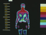 Thermography of Male 20 Minutes after Exercise Photographic Print