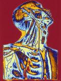 Upper Body Anatomy Photographic Print