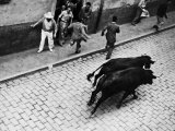Running of the Bulls for Fiesta of San Ferman Premium Photographic Print by Tony Linck