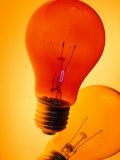 Still Life Electric Light Bulbs Photographic Print