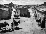 Spanish Village Showing Rows of Crude Stone and Adobe Houses Premium Photographic Print by W. Eugene Smith