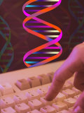 Conceptual DNA Research DNA Computers Finger Hand Photographic Print