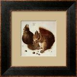 Squirrels Posters by Albrecht Dürer