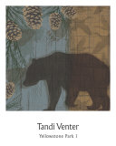 Yellowstone Park I Prints by Tandi Venter
