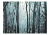 Spring Mist I Posters by Marvin Pelkey