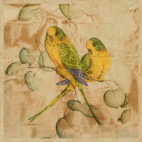 Songbirds I Prints by John Butler