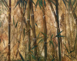 Bamboo Forest II Prints by Judeen