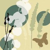 Organic Zen III Plakater af Jan Weiss