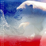 Digital Montage of a Polar Bear with Temperature Readings Photographic Print