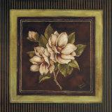Magnolia I Poster by Kimberly Poloson