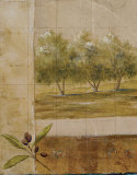 Olive Groves I Prints by Cheryl Martin
