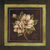 Magnolia I Kunstdrucke von Kimberly Poloson