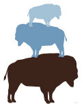 Blue Buffalo Posters par  Avalisa