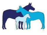 Blue Herd Affiche par  Avalisa