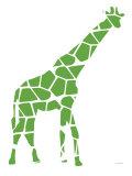 Green Reticulated Premium Giclee-trykk av  Avalisa