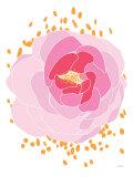 Pivoine rose Posters par  Avalisa