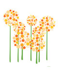 Orange Alliums Poster by Avalisa