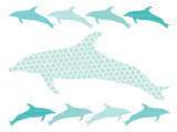 Seagreen Dolphin Family Poster par  Avalisa