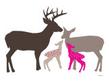 Pink Deer Prints by  Avalisa