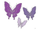 Purple Butterfly Posters by  Avalisa