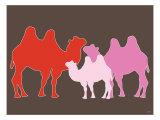 Pink Camel Posters par  Avalisa