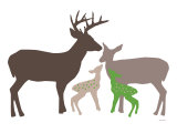 Green Deer Poster by  Avalisa