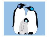 Blue Penguins Reproduction giclée Premium par  Avalisa
