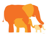 Orange Elephants Posters by  Avalisa