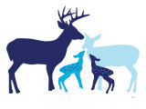 Blue Deer Print by Avalisa 