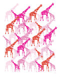 Pink Giraffe Pattern Posters by Avalisa 