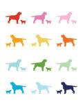 Rainbow Labs Affiche par  Avalisa