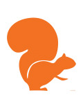Orange Squirrel Posters par  Avalisa