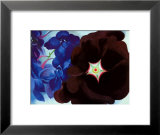 Black Hollyhock Blue Larkspur, 1930 Art by Georgia O&#39;Keeffe
