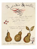 Poire II Reproduction proc&#233;d&#233; gicl&#233;e par Susan Gillette