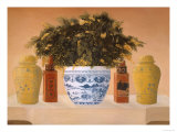 Asian Still Life II Lámina giclée por Hampton Hall