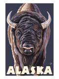 Alaska, Bison Up Close Prints by  Lantern Press