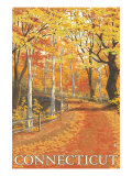 Connecticut, Fall Colors Scene Print by  Lantern Press